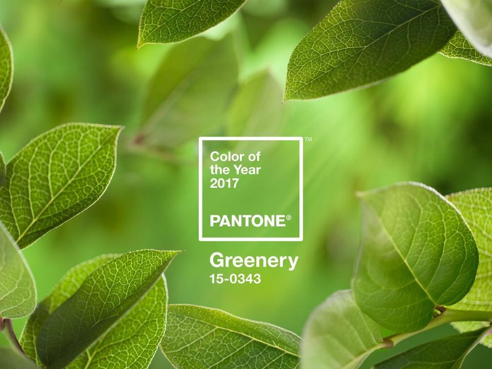 Greenery este culoarea lui 2017. Vai, ce bine!