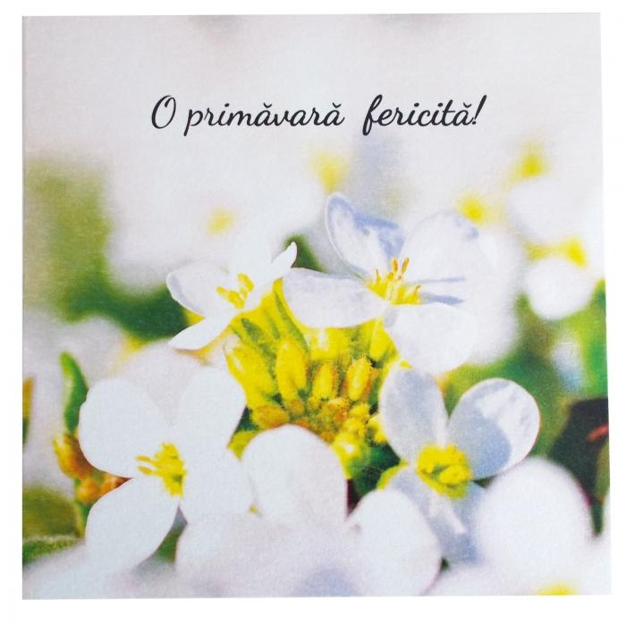 Felicitare martie flori albe 1