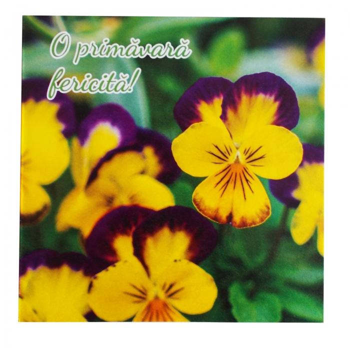 Felicitare martie panselute