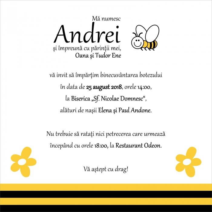 INVITATIE ELECTRONICA BOTEZ ALBINUTA 0