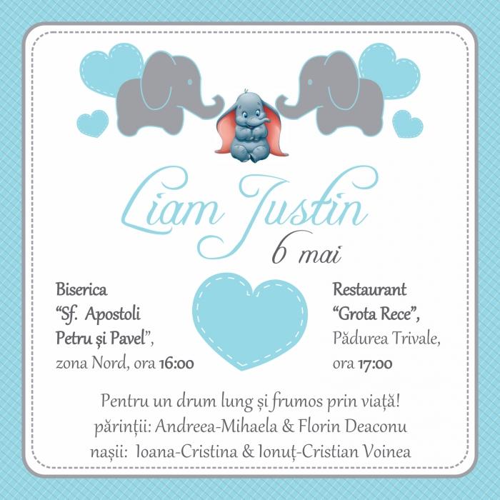 invitatie electronica botez elefantel bleu 0