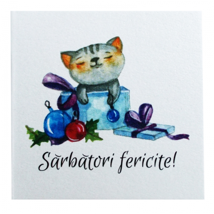 Minifelicitari Craciun pisica