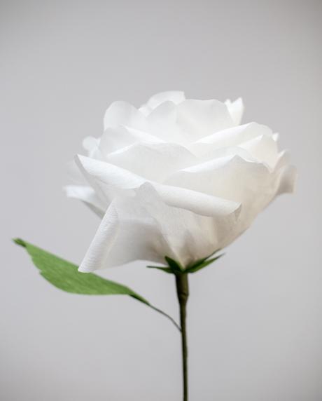 Trandafir alb 40 cm hartie creponata
